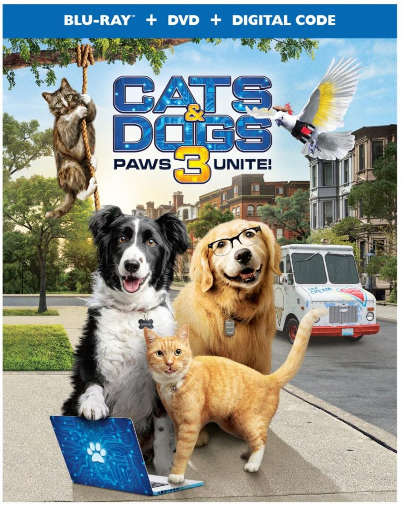 Cats-and-dogs-3-paws-unite